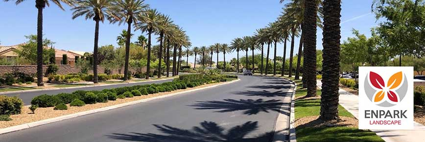Trimming and Pruning Trees in Las Vegas Nevada