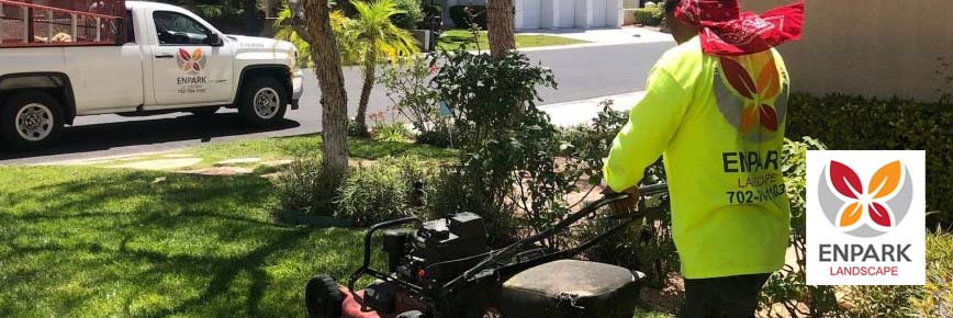 Tree and Lawn Service Quality