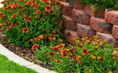Landscaping Tips for Killing Weeds in Flower Beds