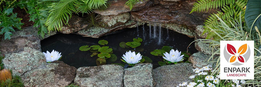 A Simple Guide to Backyard Pond Construction
