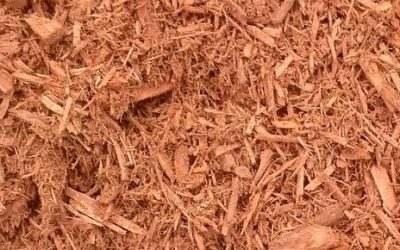 Different Types and Usages of Mulch in Landscaping